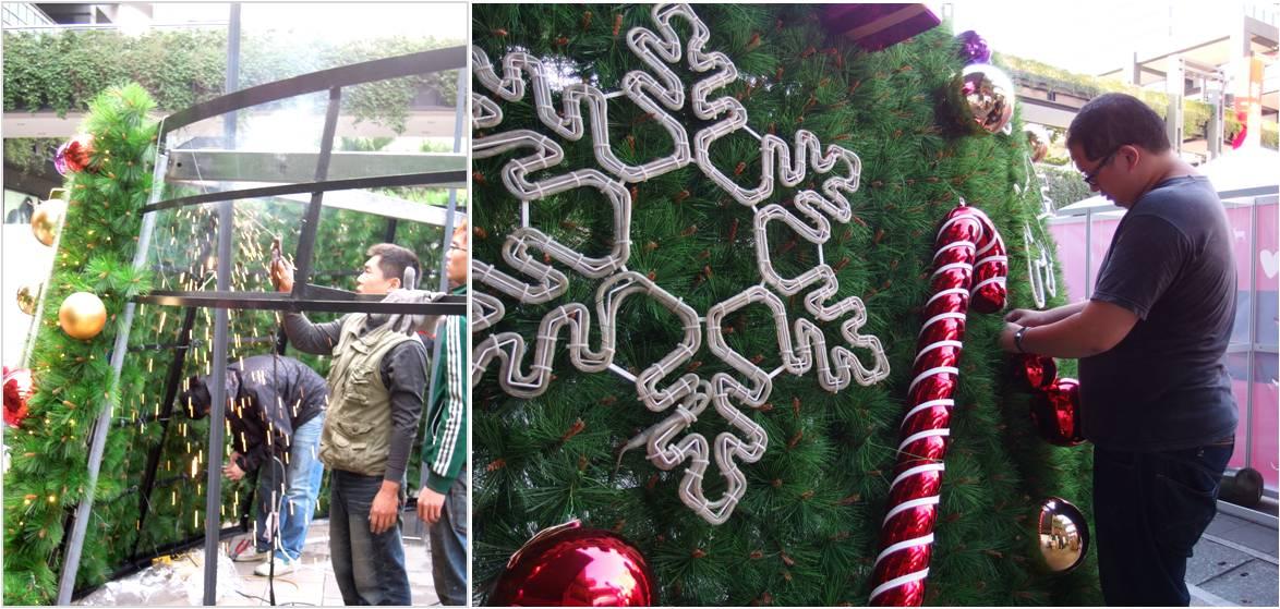 2013-1213聖誕樹下篇10