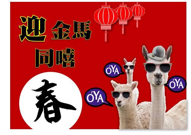 2014-0117金馬迎春.領略台北101春之美-01